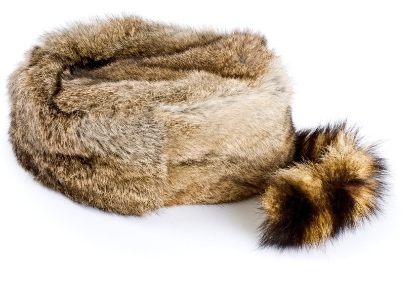 Photo of a coonskin cap