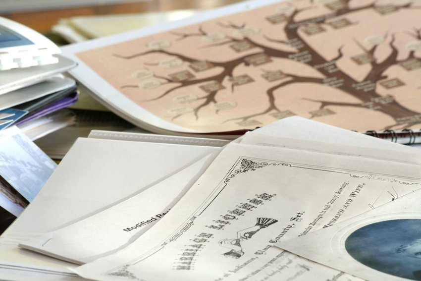 Close-up photo of documents displaying a family tree and related text