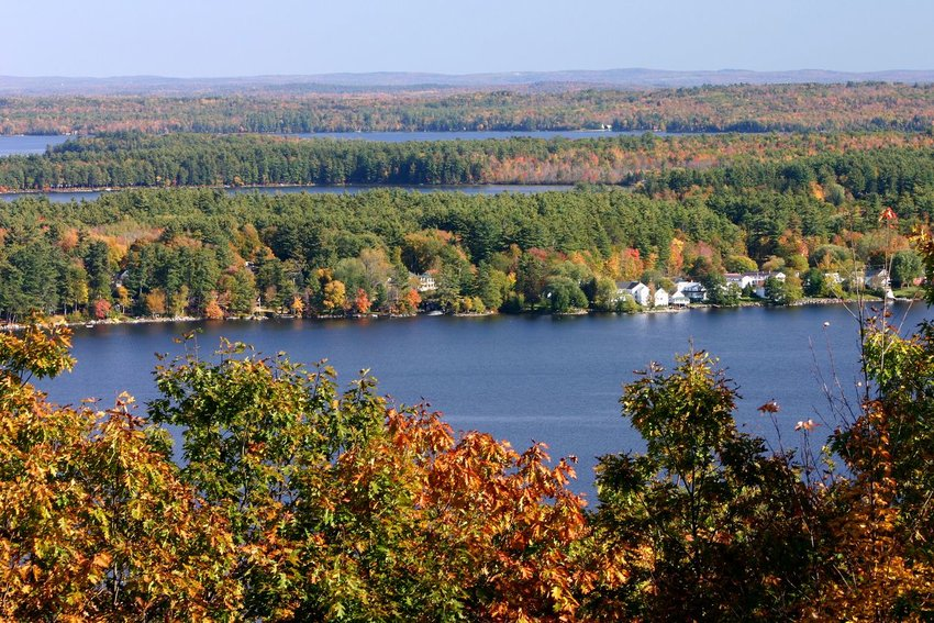 Aerial photo of autumn-colored trees along the water