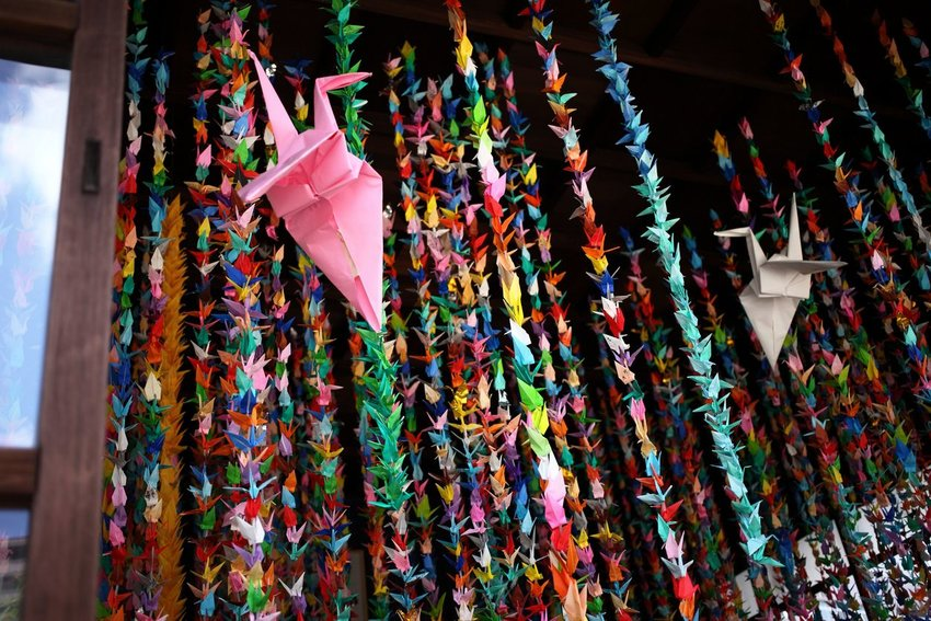 Photo of colorful origami cranes