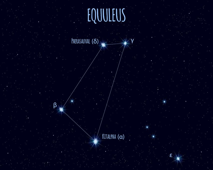 Detailed, labeled illustration of the Equuleus constellation