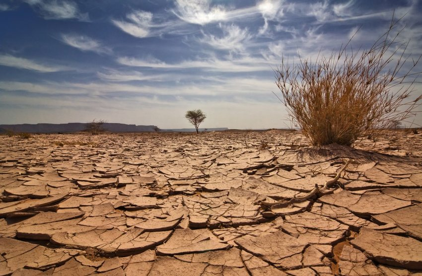 Image of dry, cracked desert dirt