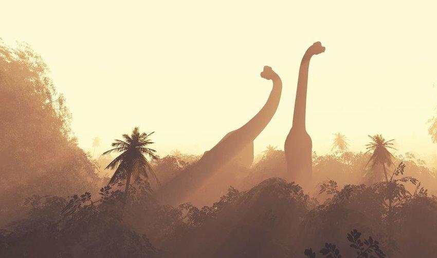 Illustration of Brachiosaurs