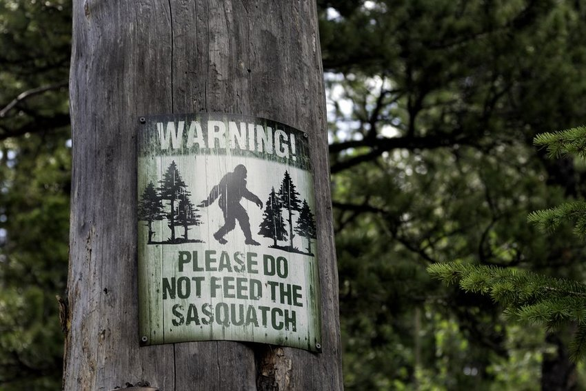 Sign on wooden pole warning visitors of Sasquatch at Rocky Mountain National Park, Colorado