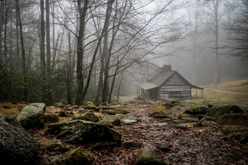 Old log cabin in foggy, mysterious woods surrounded by trees and rocks