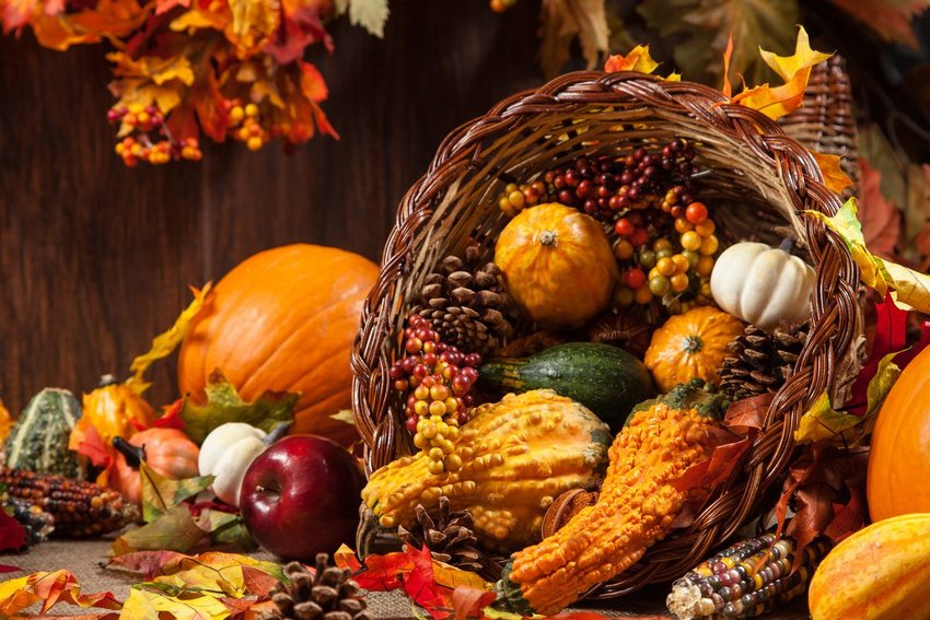Up close view of autumn cornucopia with gourds, fruits, and pine cones