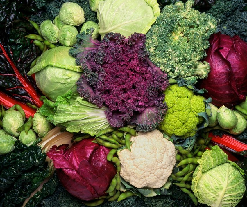 Stack of multi-colored assorted vegetables, cabbages, pods, and leaves
