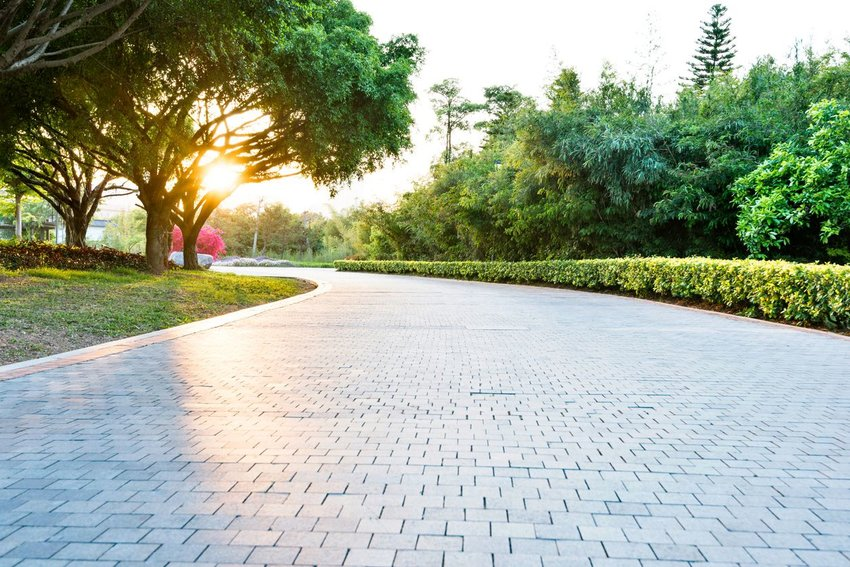 Paved stone walkway with green shrubs and trees, lit by calm evening sunset