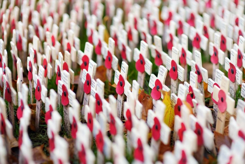 Poppy crosses at the Westminster Abbey Field of Remembrance, on Remembrance Day, in London