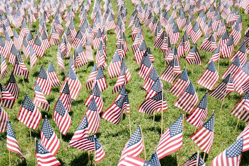 American flags waving in a field