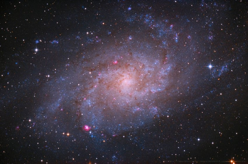 Space view of the M33: Triangulum galaxy in spiral shape