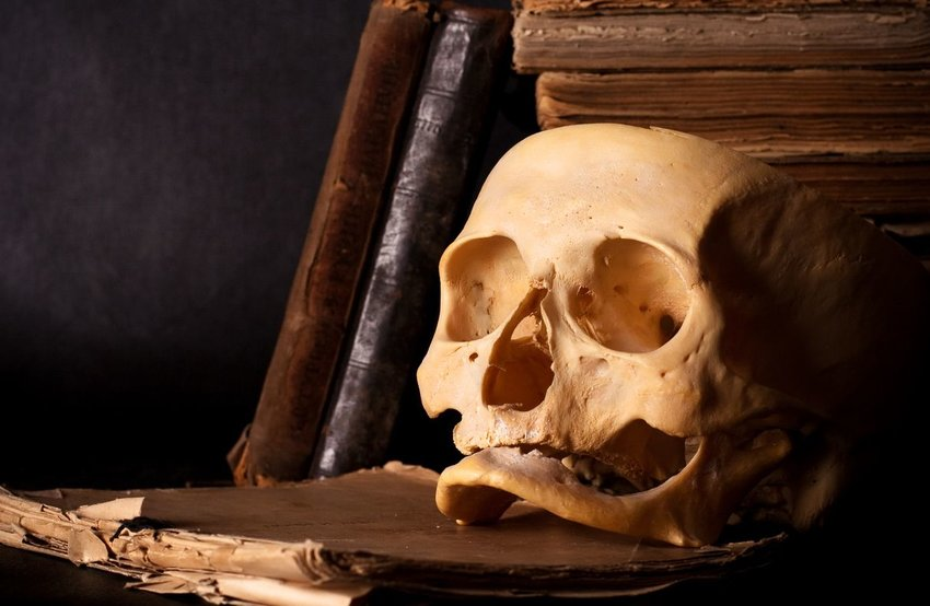 Human skull on stack of old books