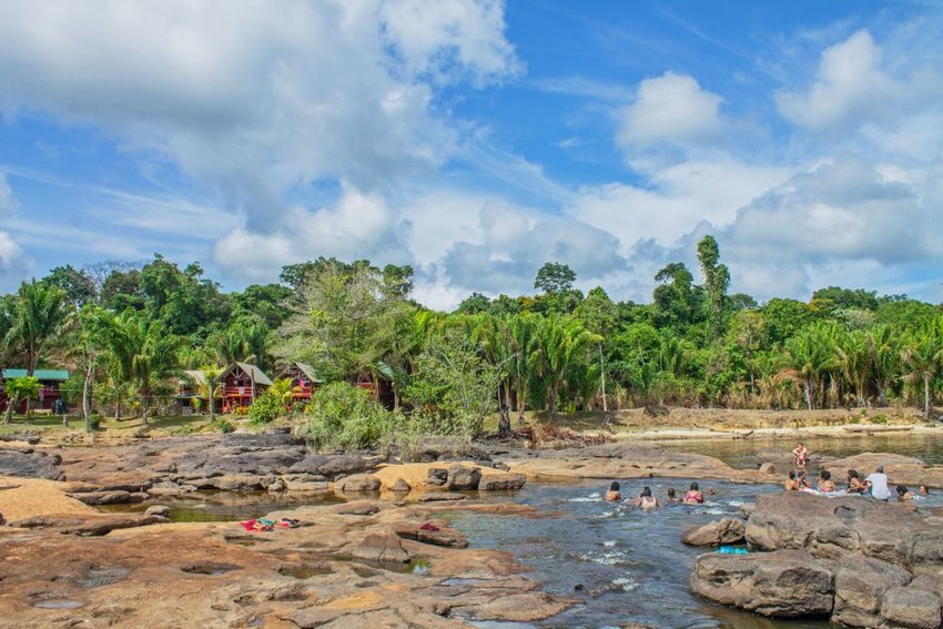 Tropical rain forest in Suriname
