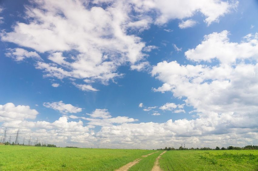 Open field of green grass seen under a bright blue sky with scattered clouds