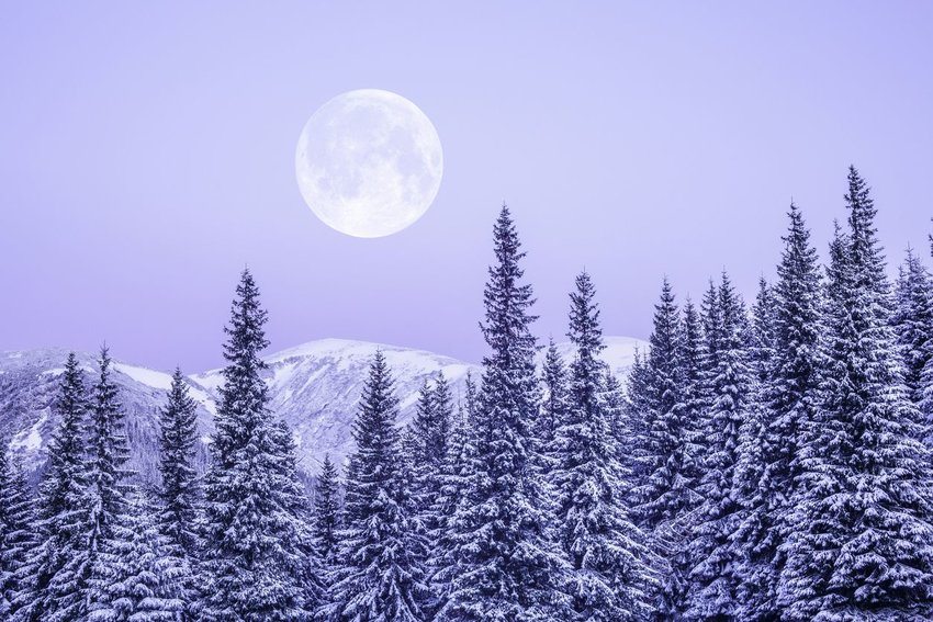 Full moon in the sky over snow covered mountains and trees