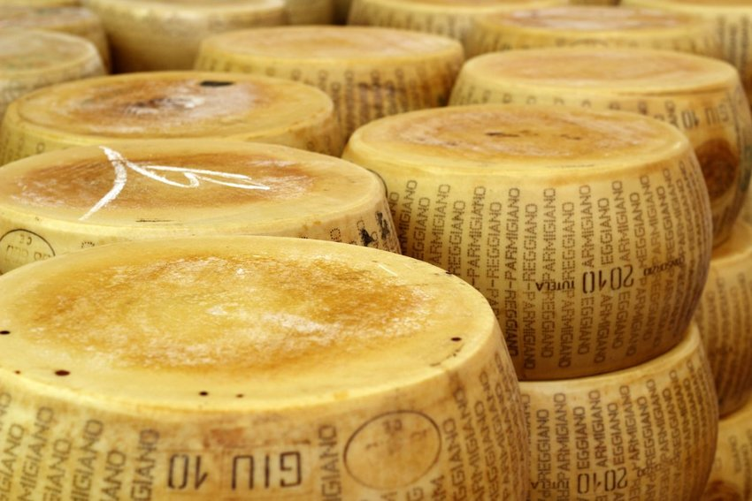 Stacks of wheels of cheese