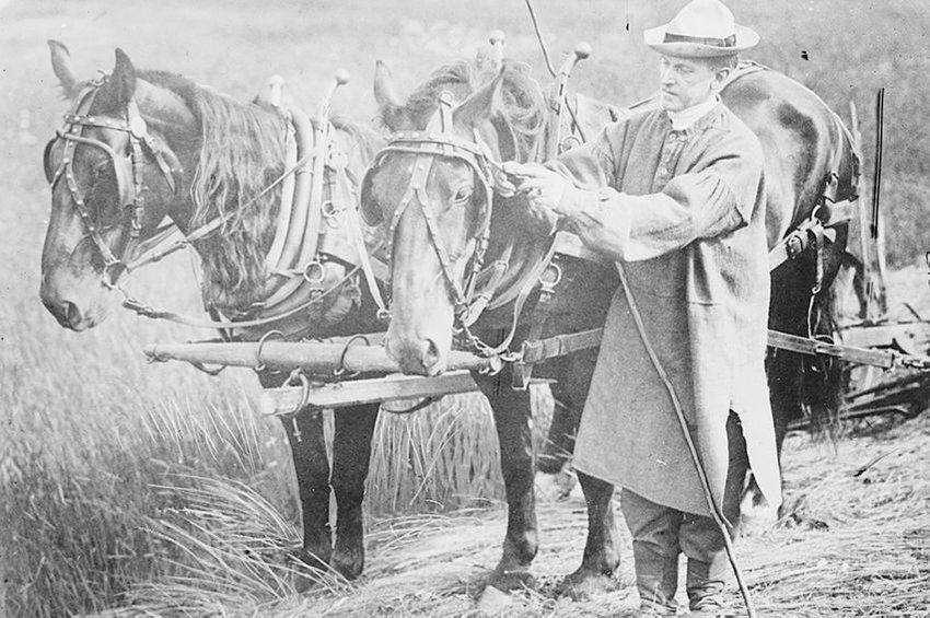 Calvin Coolidge shown with a team of horses, while on his farm in Plymouth Notch, Vermont